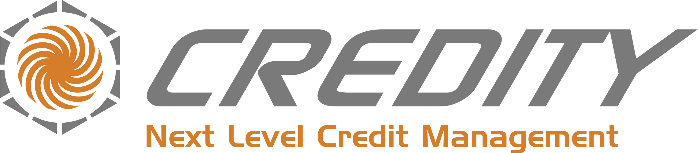 CREDITY - Next Level Credit Management